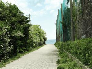 三浦半島 観音崎ボードウォーク入り口