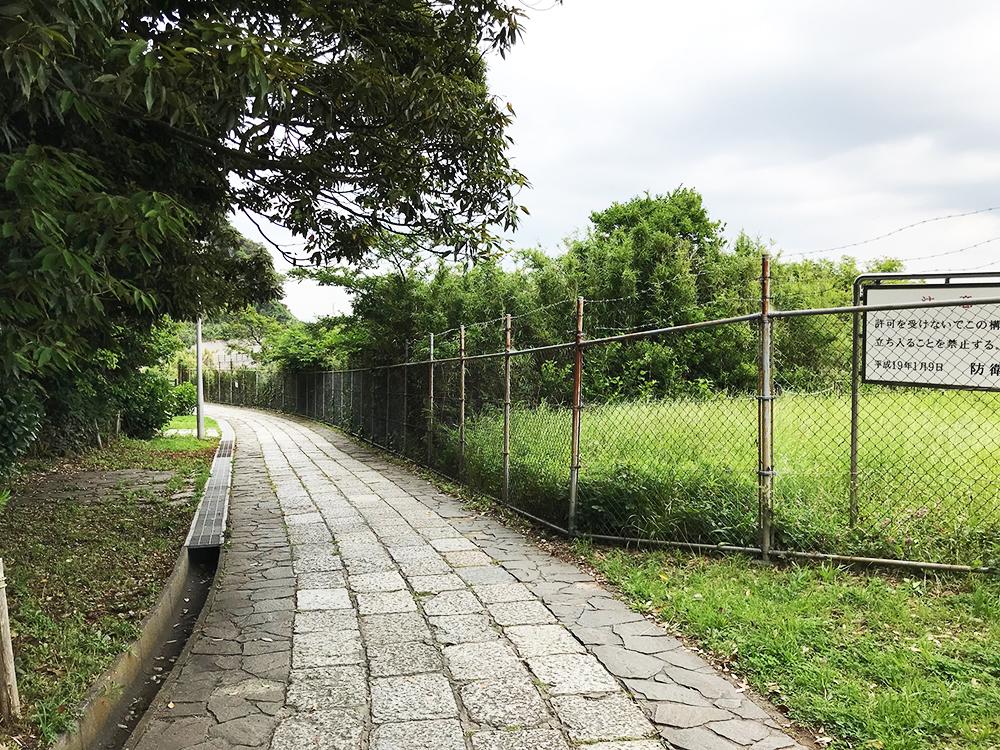 子犬の育て方 防衛省 観音崎公園