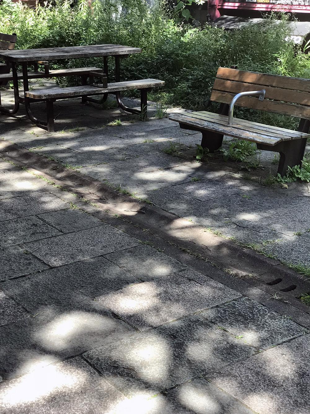 外濠公園のベンチ二つ