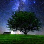 夜の公園 夜の散歩