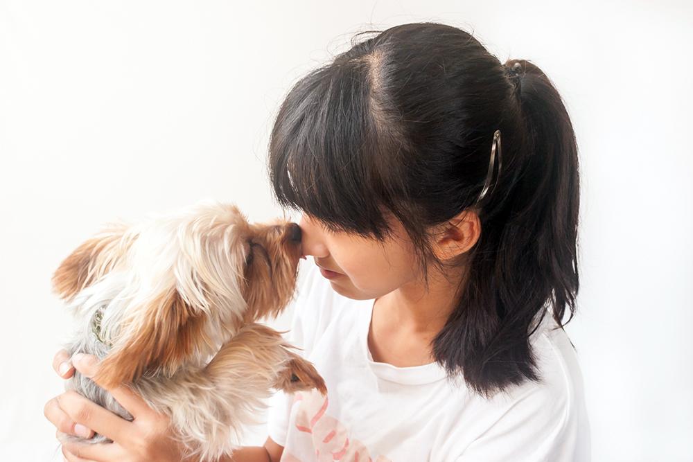 犬とのスキンシップする女の子