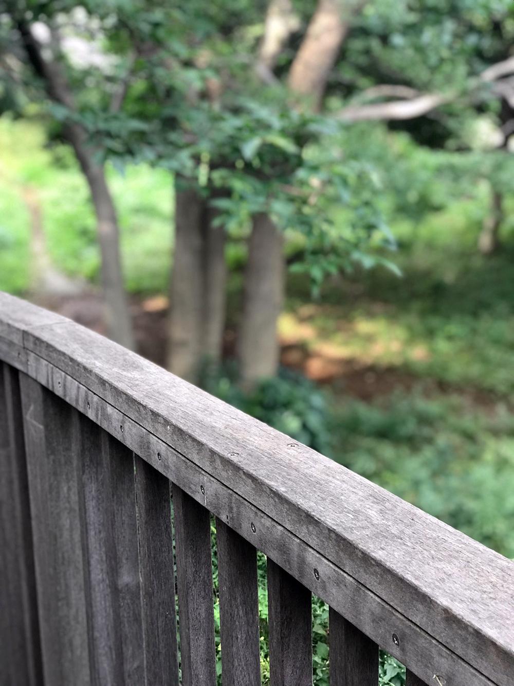 森のデッキ 陸橋