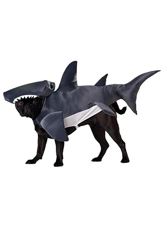 犬のハロウィンコスチューム