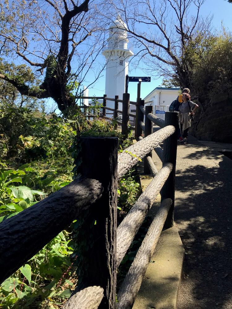 木立越しの灯台