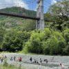 秦野戸川公園 犬と川遊びできるエリアはどこ?