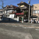 三崎港で犬もマグロ三昧のランチを!
