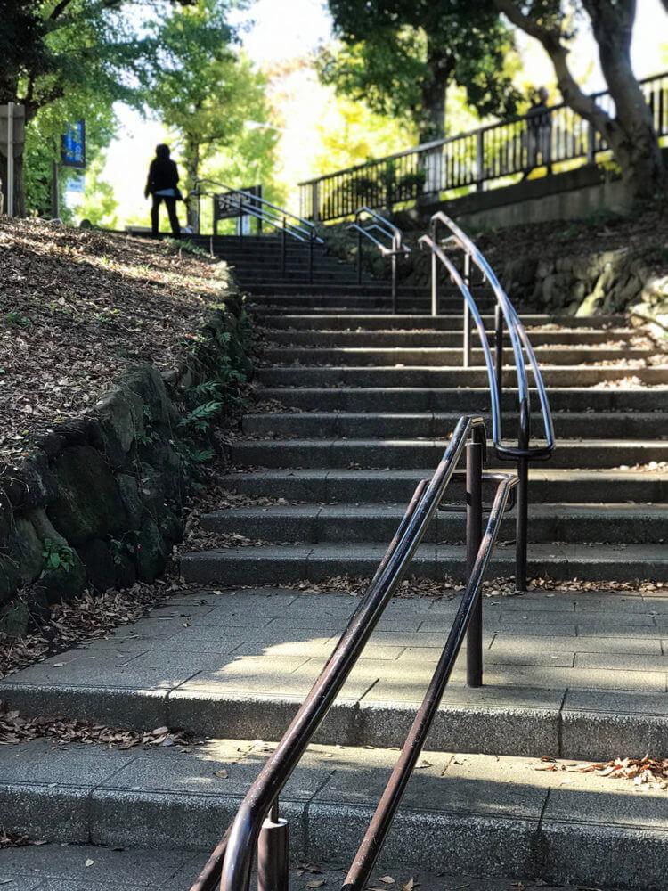 ドッグラン前の階段
