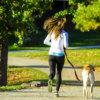 犬とのジョギングを散歩に取り入れる