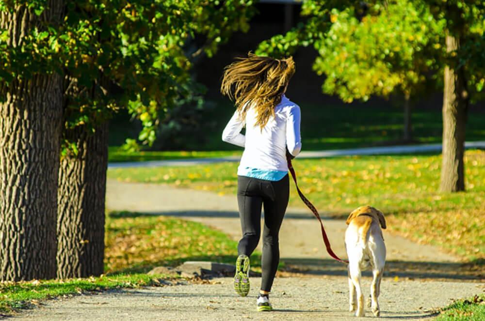 犬とジョギング