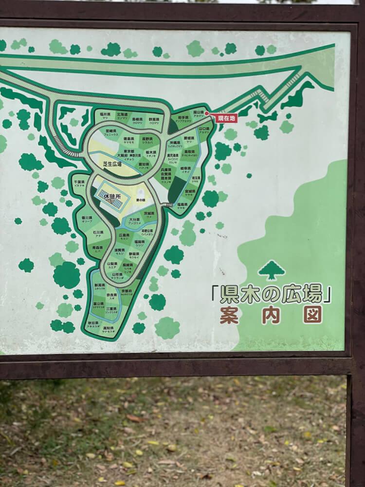 県木の広場 看板
